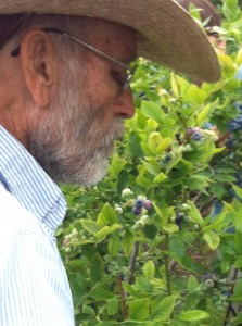 My Fabulous Uncle Rufus Picking Blueberries!