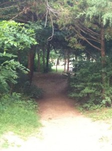 The Path At Gulley Park