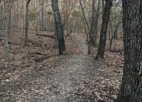 Mt. Kessler Trail